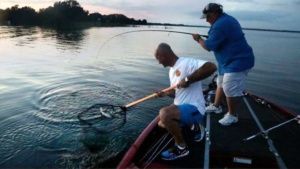 website marketing for lake tarpon springs, fl